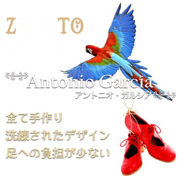 ZAPATOS(シューズ)